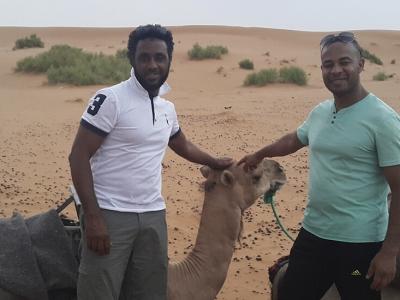 camel-treking